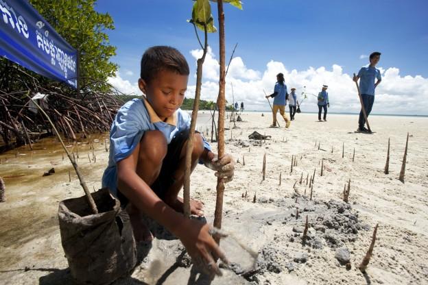 Myanmar 19-001 Mangrove planting 1_Jeremy Holden_FFI