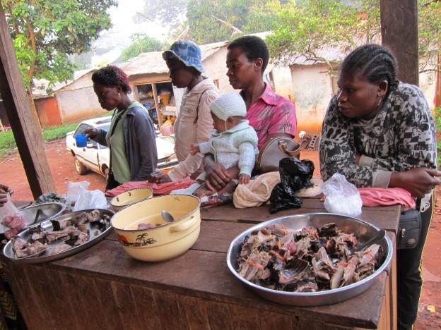 Cameroon 20-007 Bushmeat market