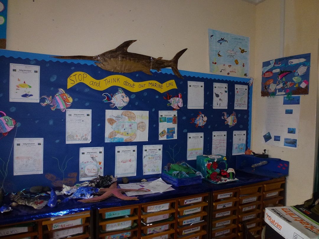 St Helena DPLUS070 Schools on the island decorate their classrooms for Marine Awareness Week, Credit - St Helena Govt