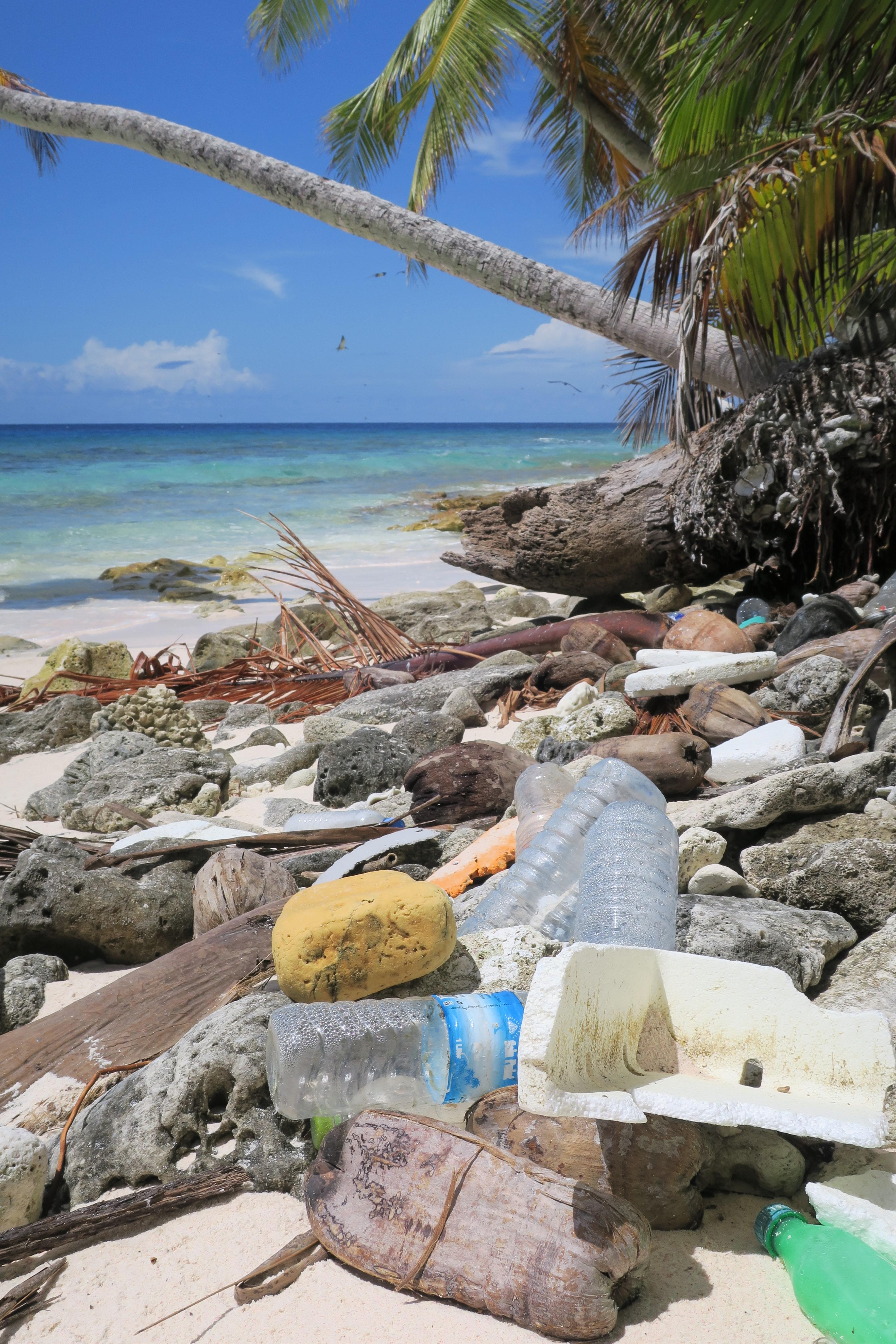 BIOT DPLUS090 Marine debris washed ashore on Ile Parasol beach on Peros Banhos Atoll, Credit - Dan Bayley